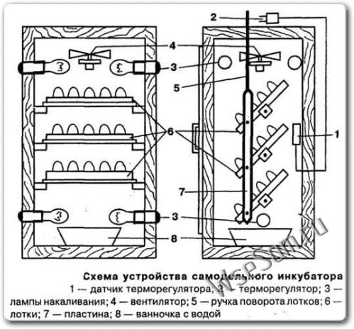 Как сделать самодельный инкубатор