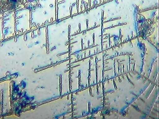 Самодельный микроскоп из вебкамеры